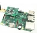 Gateway LoRa 868 Mhz Raspberry Pi