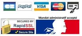CB visa paypal virement chèque mandat administratif